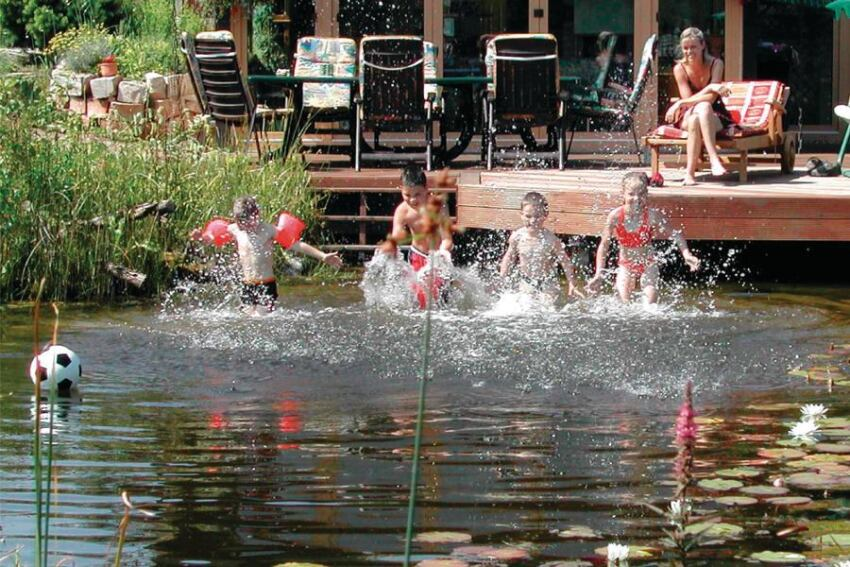 Natural Swimming Pools Can Offer Lower Operating and Energy Costs