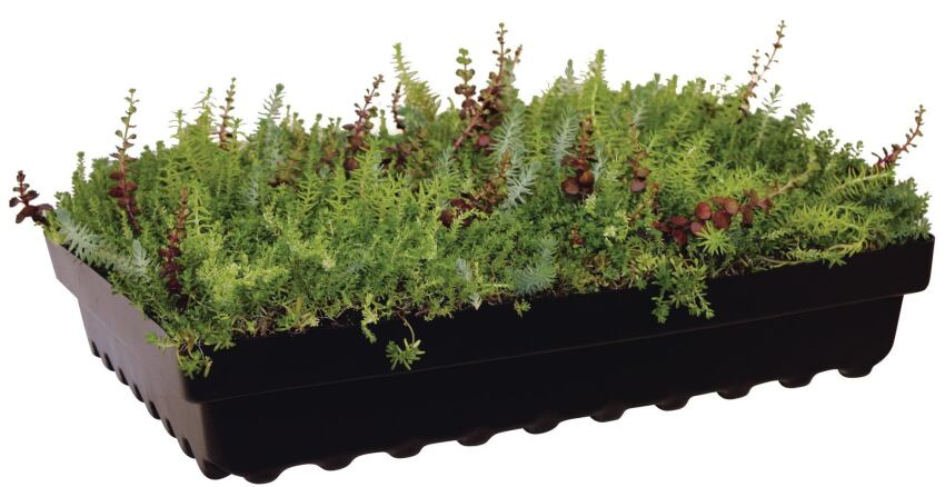 American Hydrotech's Garden Tray GT15 Is Made from Recycled Polyethylene