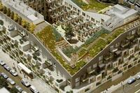 Urban Oasis: A Green Roof Goes Above and Beyond at 10 Montieth