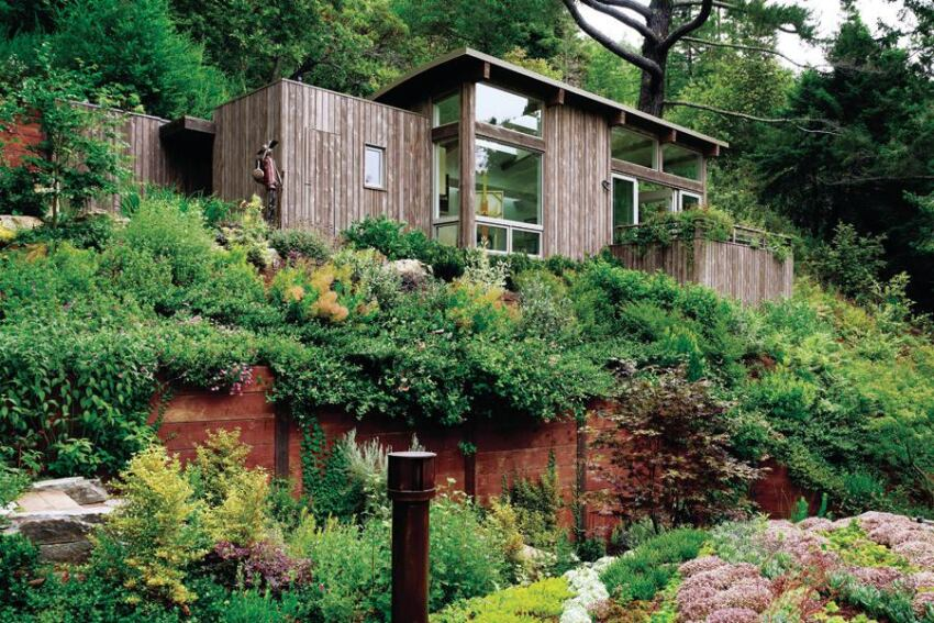 Planted Roofs Keep a Pristine Site Unspoiled