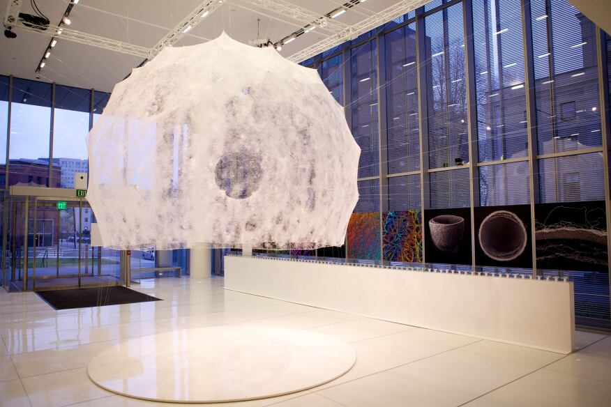 MIT Media Lab's Mediated Matters research group harnessed the natural production and construction skills of 6,500 silkworms for its Silk Pavilion installation.