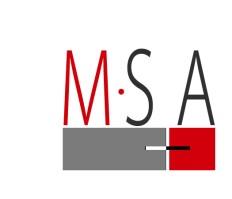 Mojo Stumer Associates Logo