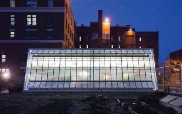 The greenhouse at dusk.