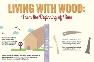 A History of Wood from the Stone Age to the 21st Century