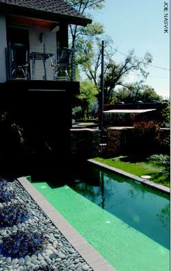Concrete pavers and coping in gray and pewter framed the backyard pool.