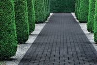 Lanxess + Black Paving Stones