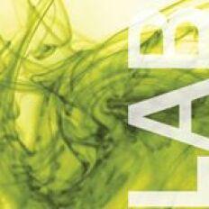 DesignLAB Logo