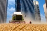 Five Pitfalls of Urban Food Production
