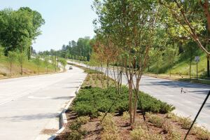 The department designs many urban forest improvements, such as the median on this new 2-mile thoroughfare with bike lanes and sidewalks, in-house.