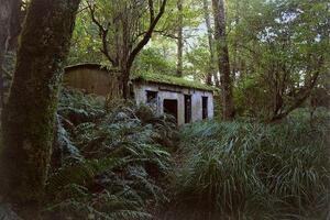 Spooky Sites: 13 Great Places Online to Hunt for Abandonment Pics