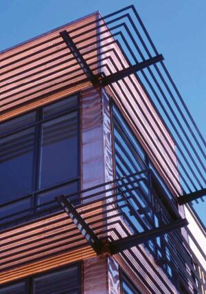 Steel factors prominently in Division1 Architects' projects, including the catwalk in this Washington, D.C., residence (above). Carney Architects uses the material internally and as an external shading device (right).