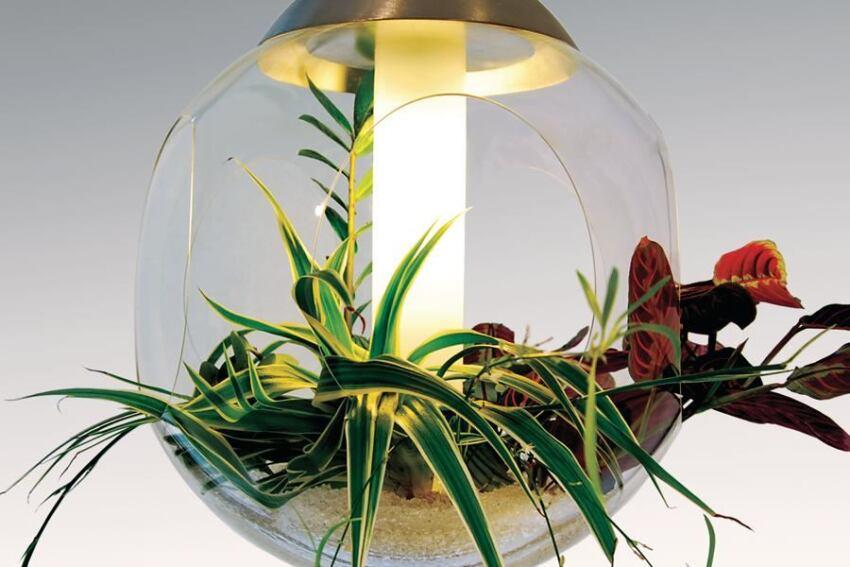 Product: Greenwork Babylone pendant fixture