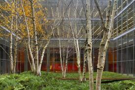 THE NEW YORK TIMES BUILDING, Lobby Garden
