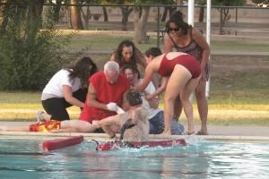 A New Approach to Lifeguard Audits