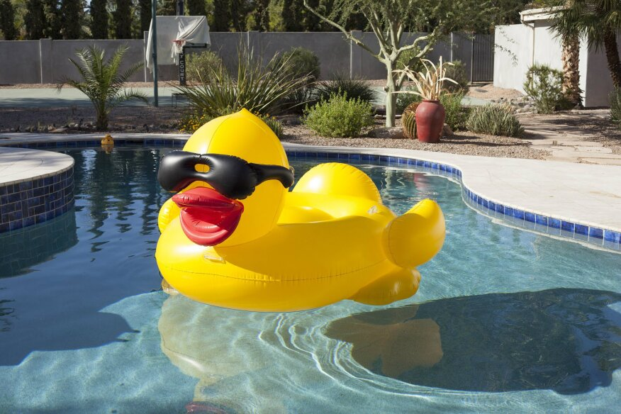Derby Duck Pool Float Seats Several Pool Spa News