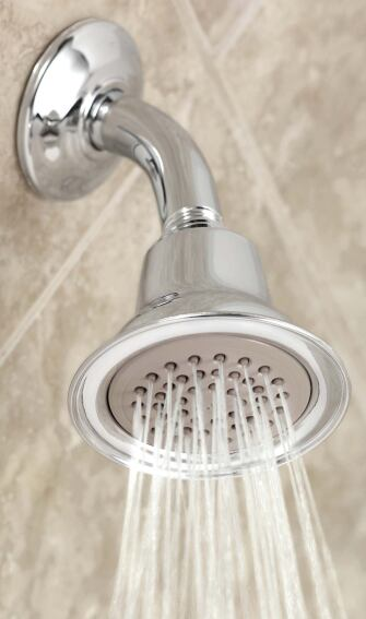 Water-saving showerhead by Moen