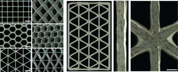 Square, hexagonal, and triangular honeycomb structures printed with the carbon fiber–reinforced epoxy resins.