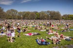 Woodstock, or Bonnaroo?