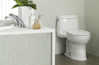 Toto Earns First Declare Label for Toilets