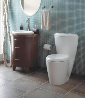 mansfield plumbing enso suite remodeling toilets bath. Black Bedroom Furniture Sets. Home Design Ideas