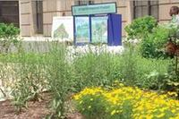EPA stormwater project goes green