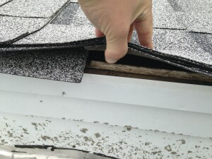 The roofer did not install any drip edge flashing, causing the edge of the sheathing to weather from exposure to water.