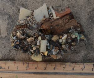 A plastioglomerate piece containing plastic fragments and pellets affixed to wood and sand.