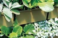 Product: Hortech LiveWall Vertical Planting System