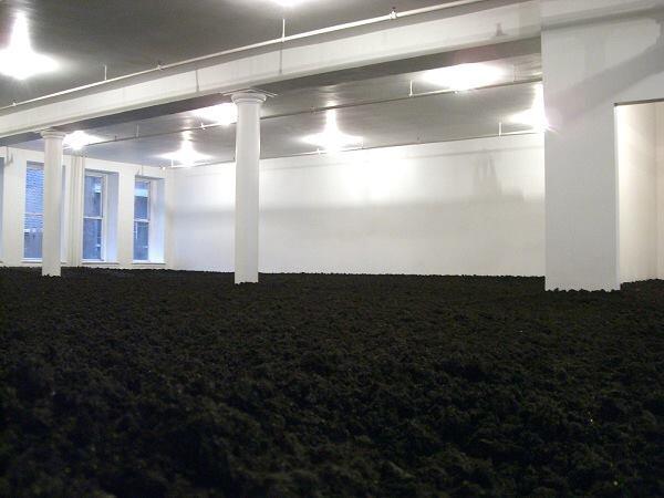 "Walter De Maria, ""The New York Earth Room,"" 1977."