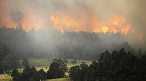 "The Black Forest wildfire is burning near Colorado Springs, Colo. As Thursday dawned it was ""zero percent contained,"" authorities said."
