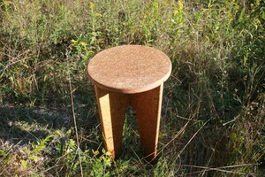 This New Furniture is Grown from Mushroom Materials