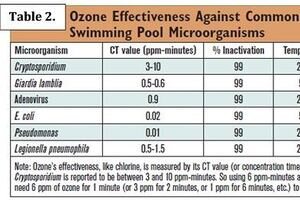 What is the True Measure of Ozone's Effectiveness?