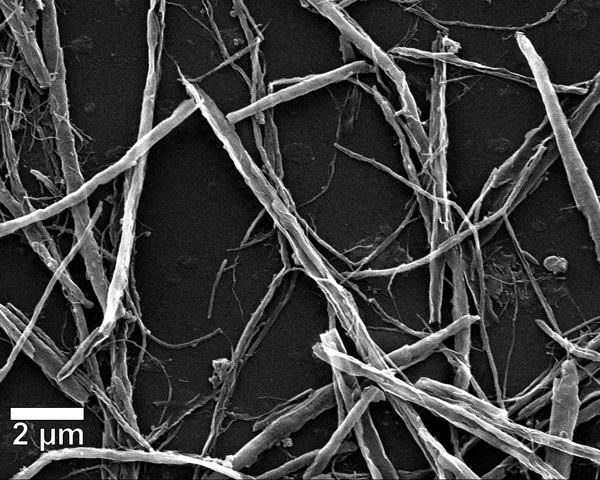 A closeup of the nanoribbon network in Rice University's novel graphene-based film.