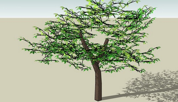 3D Warehouse tree