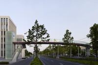Outstanding Achievement, Exterior Lighting - Telekom Bridge, Deutsche Telekom, Bonn, Germany