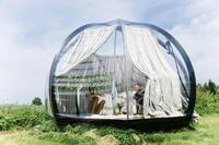 A Transparent Oasis Dome for Wild Travelers
