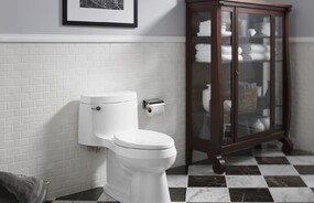 Cimarron® Comfort Height® One-Piece 1.28 gpf Toilet with Concealed Trapway
