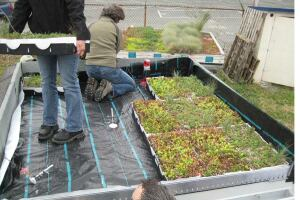 Quad-Lock REM-10 with green roof layer