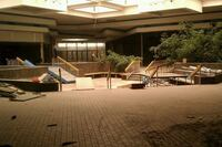 The Attraction of Dead Malls