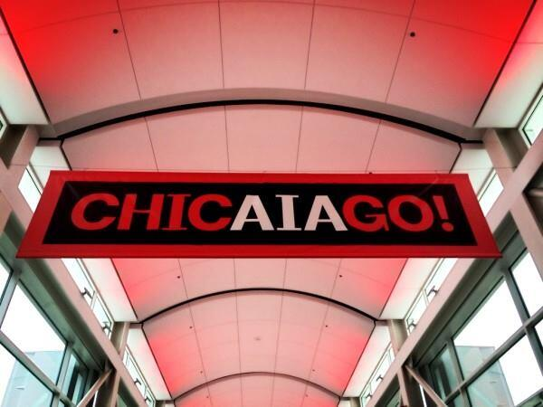 Delegates at the American Institute of Architect's 2014 national convention in Chicago voted this week on campaigns for three national offices.