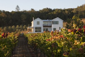 Vineyard Farmhouse