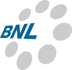BNL (USA), Inc. Logo