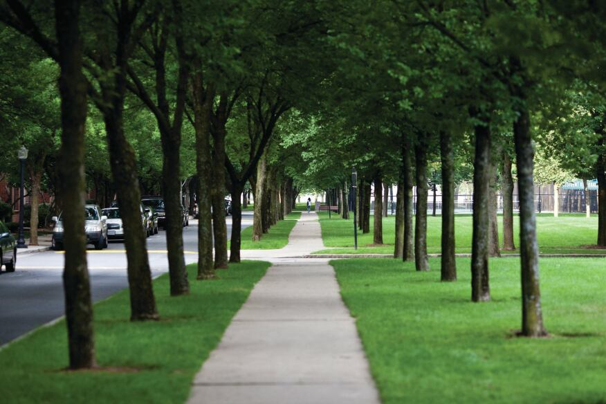 Harbor Point's central tree-lined mall is modeled on Boston's Commonwealth Avenue.
