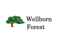 Wellborn Forest Products Logo