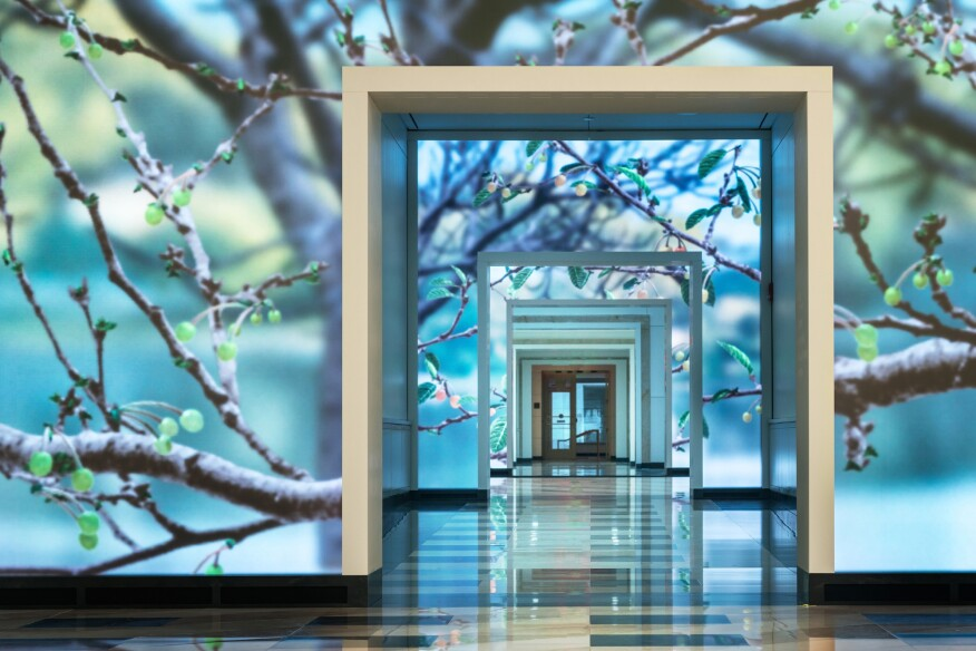 """Seasons"" lets passersby inside and outside Terrell Place experience D.C.'s cherry trees throughout the year."