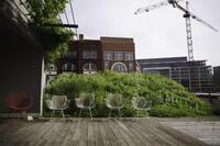 Green Roofs Capitalize on Demand for Indoor–Outdoor Living Areas