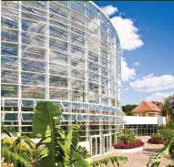 A similar-sized conservatory of traditional design would incur heating costs of $16,800 per year. The Phipps Tropical Forest Conservatory is predicted to have an annual heating bill of $2,400, and there virtually are no costs to cool the space.