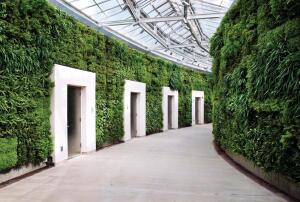 Part of Longwood Gardens' new East Conservatory Plaza, the green wall lines a covered walkway leading from the conservatory and housing eco-friendly public restrooms.