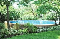 Firm Debuts the Ultimate Pool