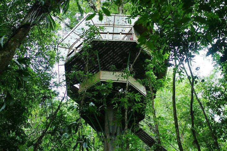 A (Seriously) Rustic New Home Community Grows in the Treetops of Costa Rica